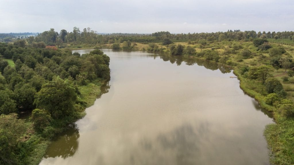Aerial view of the lake