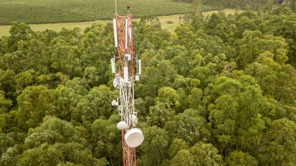 Telecommunication tower in the trees