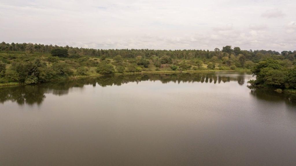 The horizon and the lake